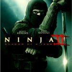 دانلود فیلم Ninja 2 Shadow of a Tear 2013 دوبله فارسی
